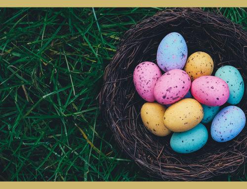 Evento Speciale Pasqua in Cascina!